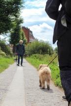 Richmond stroll-56