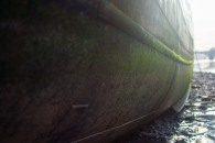 Battersea stroll 2mb edits-55