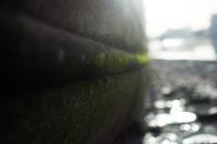 Battersea stroll 2mb edits-57