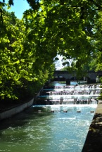 A stroll to Englischer Garten