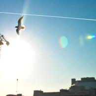 canary-wharf-winter-sun-stroll-73