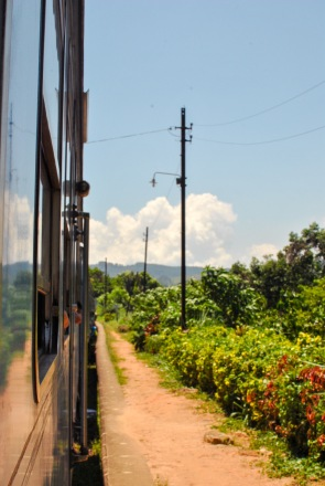 Train Kandy to Nuwara Eliya-12