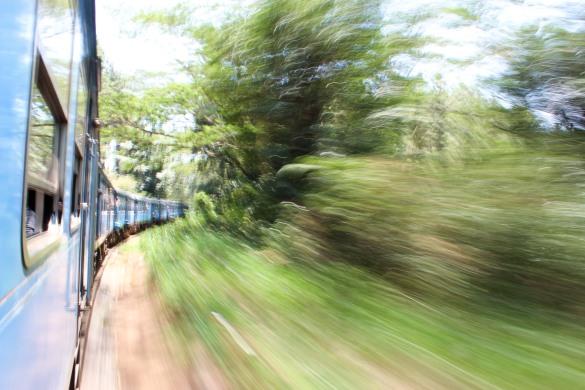 Train Kandy to Nuwara Eliya-24