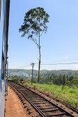 Train Kandy to Nuwara Eliya-27