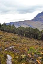Highland edits-170