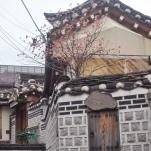 Seoul part one-242